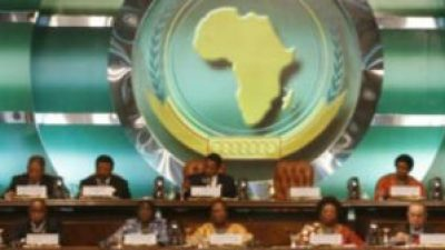 The African Union Peace and Security Council