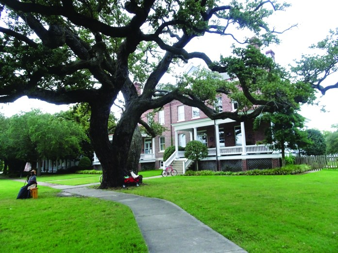 400-Years-Harriet-Tubman-sits-under-500-yr-old-tree-by-Wanda-1, Wanda's Picks for October 2019, Culture Currents