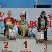 Чемпионат Санкт-Петербурга по Фристайлу (Кубок Royal Canin) 2014