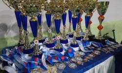 Наградные медали и кубки Чемпионата Санкт-Петербурга по аджилити