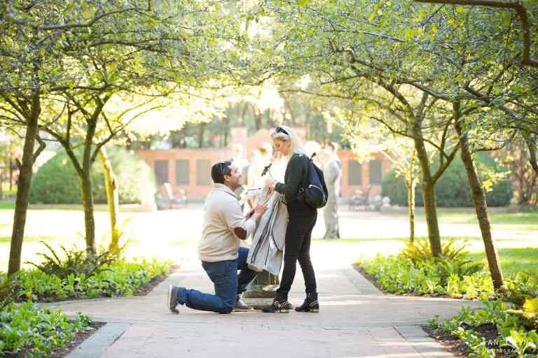 Shakespeare Garden proposal with guy on his knee and girl in black smiling