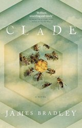 Clade, by James Bradley book review