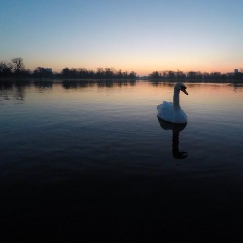 London Round Pond