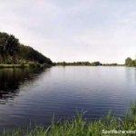 Dalldorfer See, Schaeferbuschsee Südufer