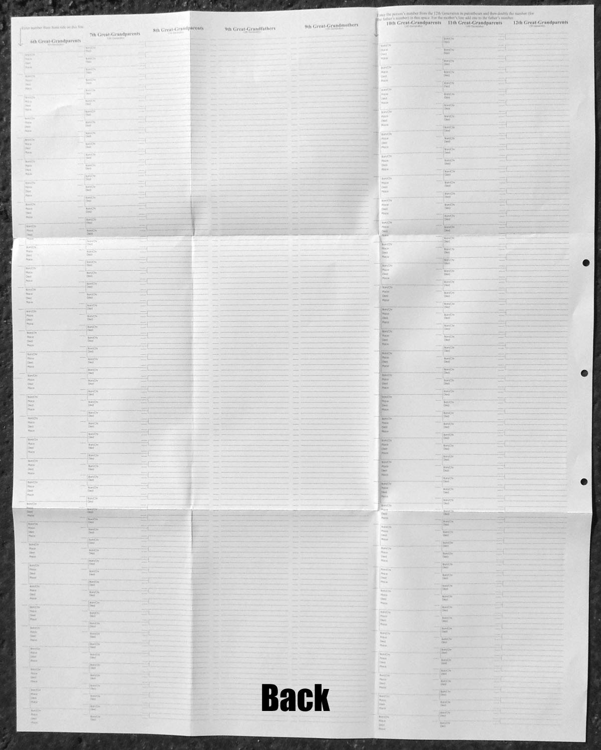 15 Generation Pedigree Chart Stevenson Genealogy Amp Copy