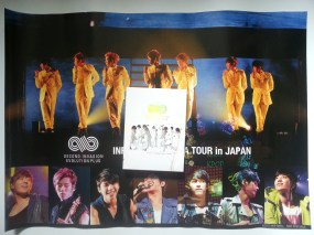 INFINITE 1st Arena Tour in Japan DVD (Japan version)
