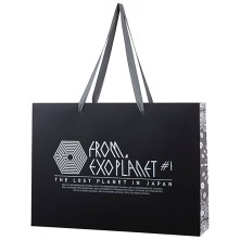 2014 EXO The Lost Planet In Japan Goods - Take Out Bag