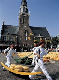 Cheese Market in Alkmaar