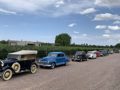 Mendoza, visit to the Vineyards in Vintage Cars