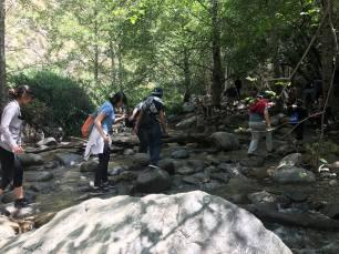 lilian hike stream 3