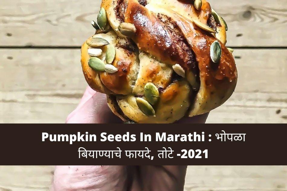 Pumpkin seeds in marathi