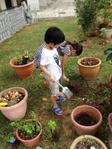 Shona and Kosuke digging earthworms and composting raw kitchen greens.