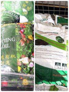 Gardening basics for new gardeners