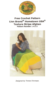 Lion Brand Hometown USA Texture Stripe Afghan Pattern Image