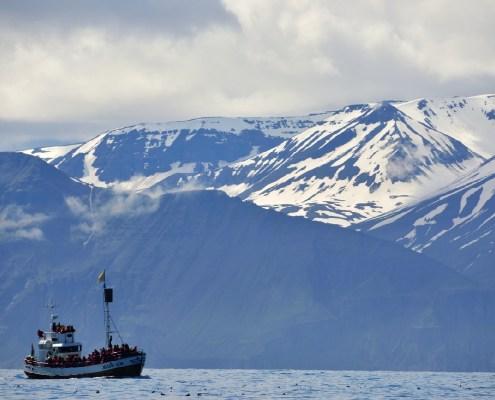 Islanda barca con panorama
