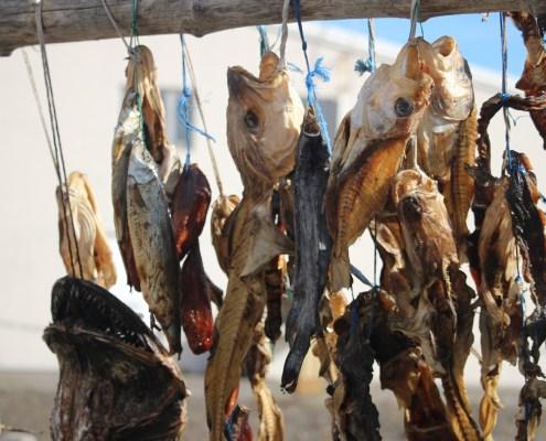 Islanda pesce secco