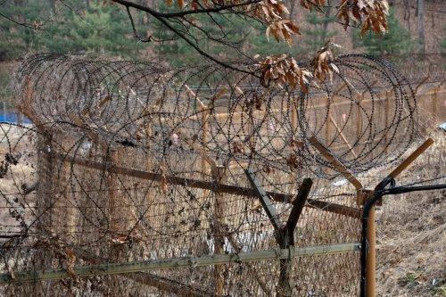 Corea: Filo spinato