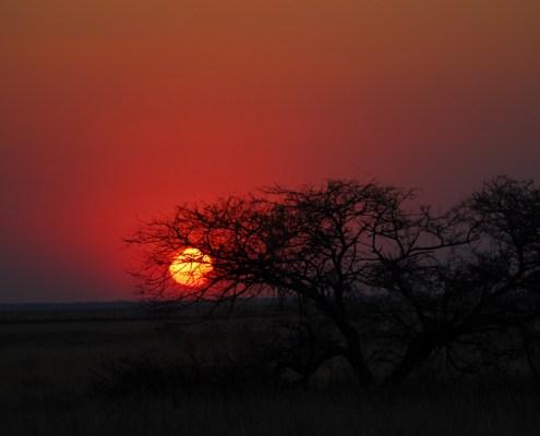Namibia: tramonto.