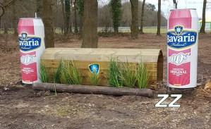 ZZ – Bavaria-thuiskomt