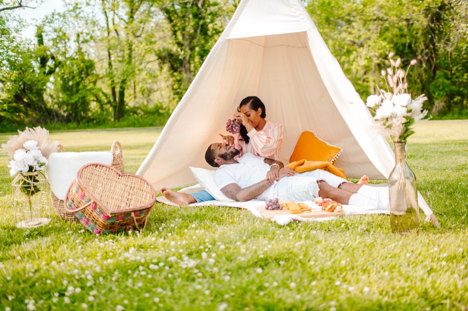 south jersey romantic picnic proposal