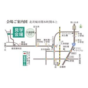 mapW100
