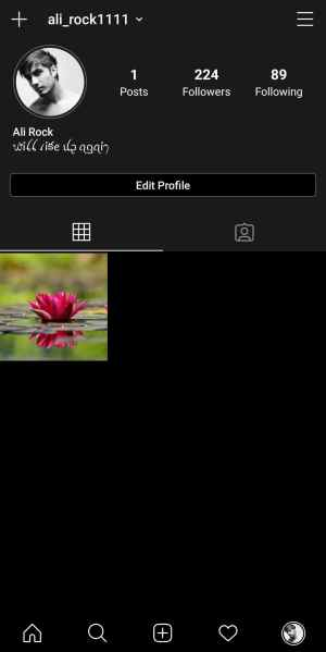 How to Change Instagram Font for Bio (Profile), Story & Direct Messages