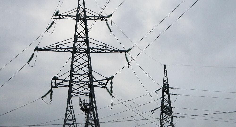 """اليمن.. """"غراب"""" يتسبب في قطع الكهرباء في عدن وإحالة مسؤولين للتحقيق"""
