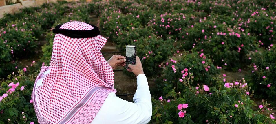 """السعودية تعلن زراعة أكثر من 14 مليون شجرة """"مانجروف"""""""