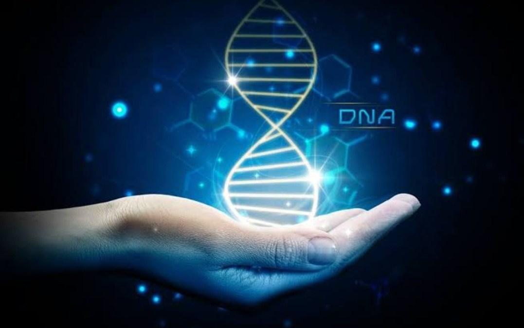 DNA يجمع أماً بإبنها بعد 33 عاما من الفراق