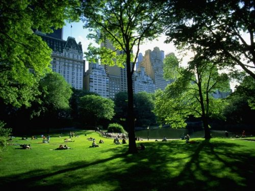 Central Park facts in Hindi