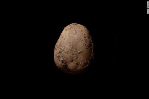 दुनिया की सबसे महंगी फोटो Kevin abosch Potato