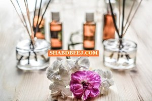 Aromatherapy Hindi