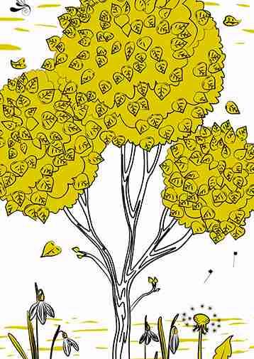 Wisdom Tree closeup