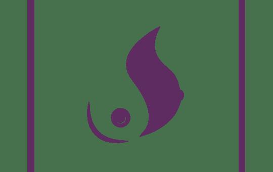 DS Icon Purple