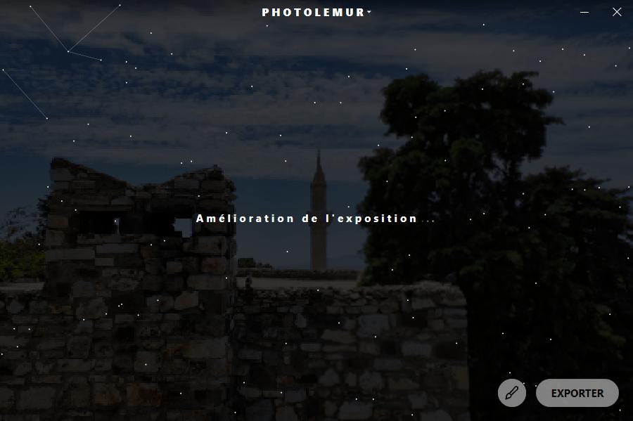 photolemur5