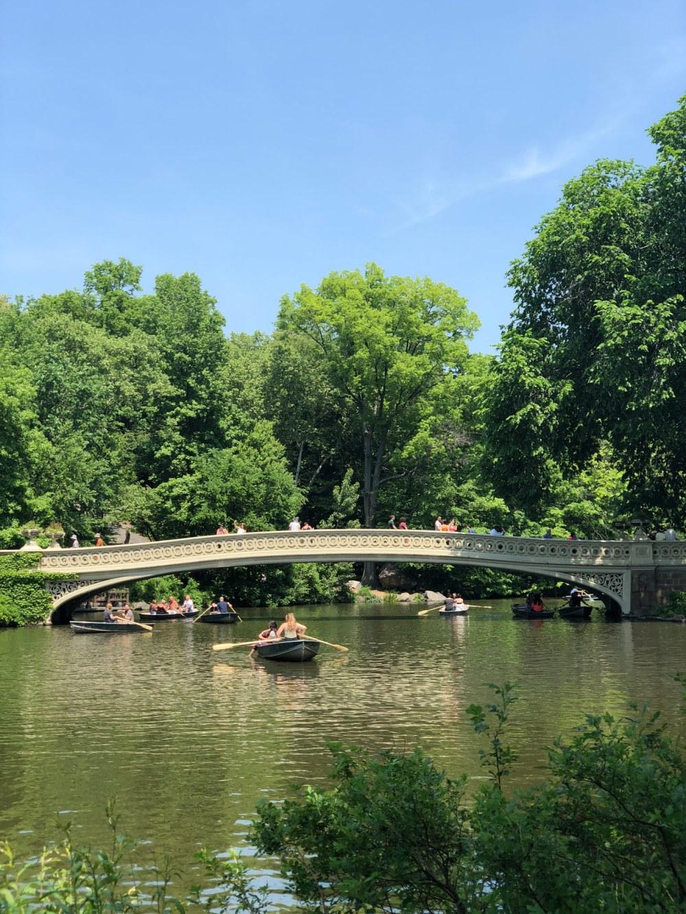 Central Park the pond