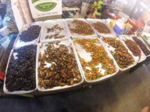 Exotic Foods