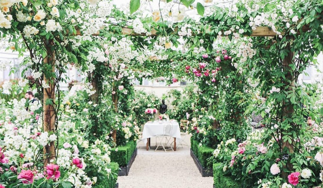 Great Spring RHS Chelsea Flower Show