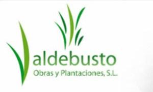 logo_valdebusto