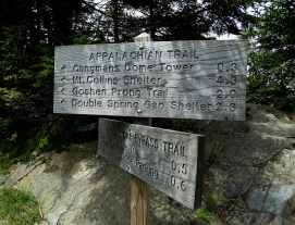 We hiked the Appalachian Trail - well sorta!