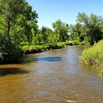 Biking along Goose Creek