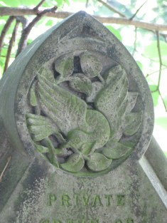 A beautifully carved dove on the grave of Charles Edward Williams who died aged 6 months. ©Carole Tyrrell