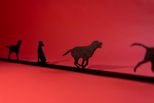 Labrador shadowshapes set on red background