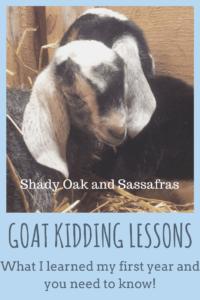 goat kidding lessons