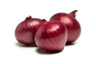 06_red_onion_4.jpeg