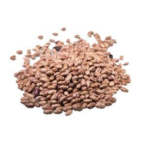 barlotti-beans_3.jpg