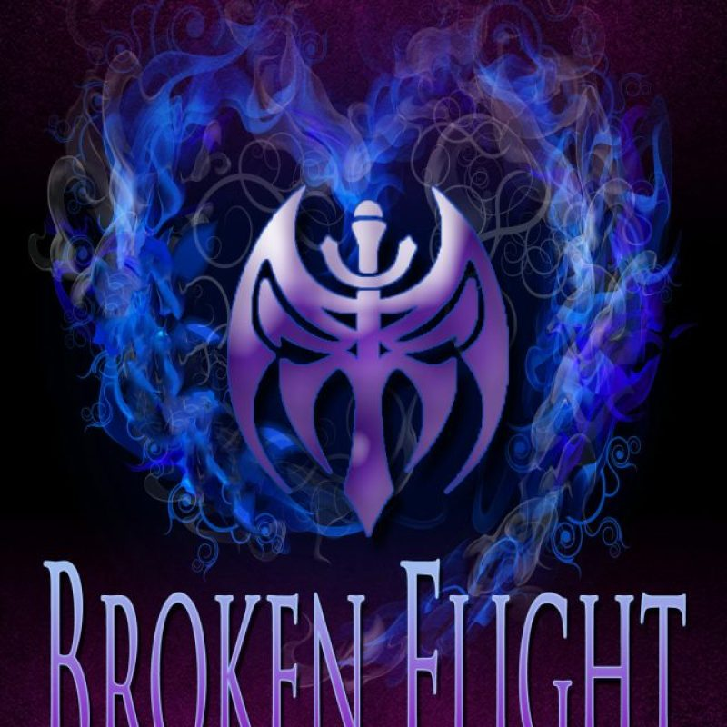 Broken Flight (Angels of Punishment #1) Tour / Interview / Give Away