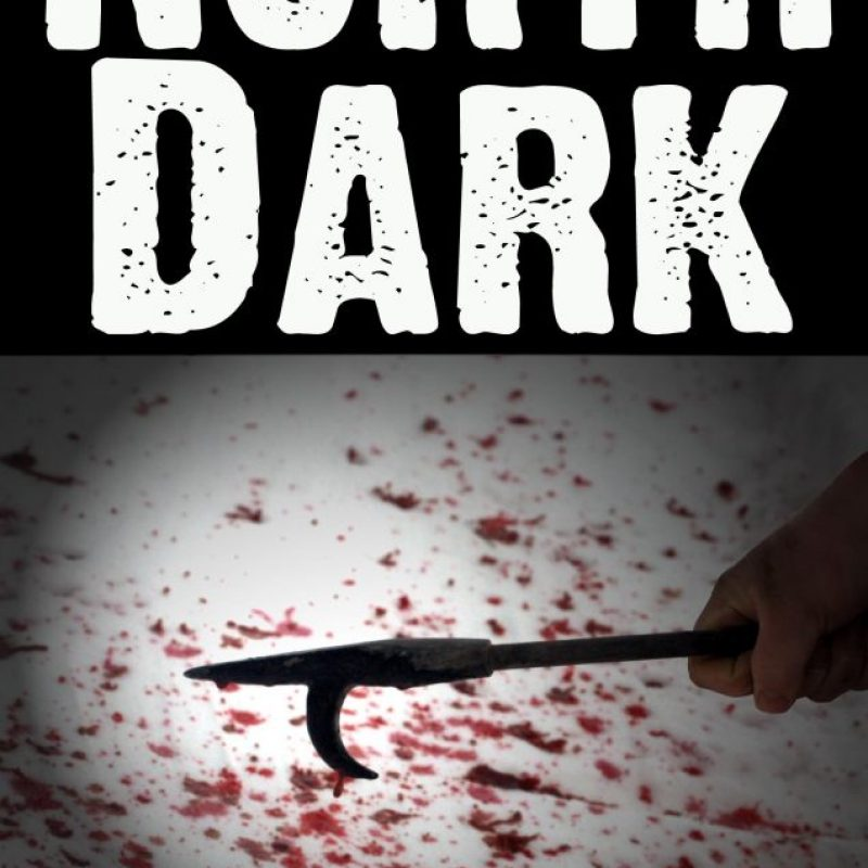 North Dark #Post-Apocalyptic Dystopian #Thriller by Lane Kareska