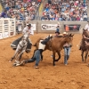 Shaie Williams for AGN Media. Jamie Howlett in trouble during the bareback bronc riding at the Tri State Fair PRCA Rodeo held at Amarillo National Center in Amarillo, TX on September 24, 2016.