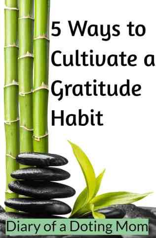5 Ways to cultivate a gratitude habit